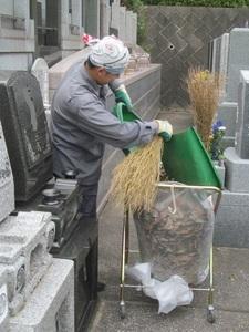 墓地清掃1.jpg