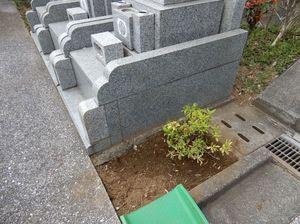 霊園清掃3.jpg