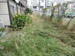 アパート草刈4−1.JPG.jpg