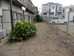 アパート草刈4−2.JPG.jpg