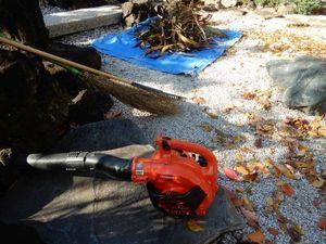 品川庭掃除1−3.JPG.jpg