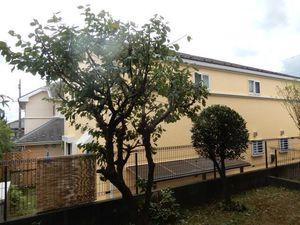 庭木剪定3−2.JPG.jpg
