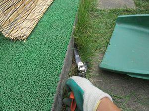 芝刈手刈り.jpg